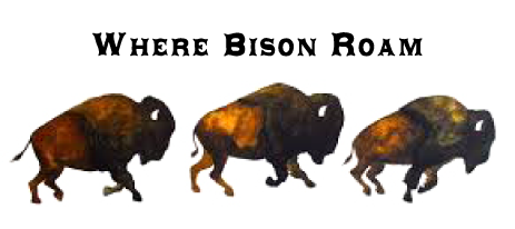 Where Bison Roam